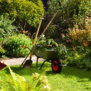 Comment réhabiliter un jardin après un chantier ?
