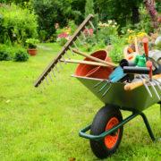 Les astuces pour limiter les opérations d'entretien du jardin