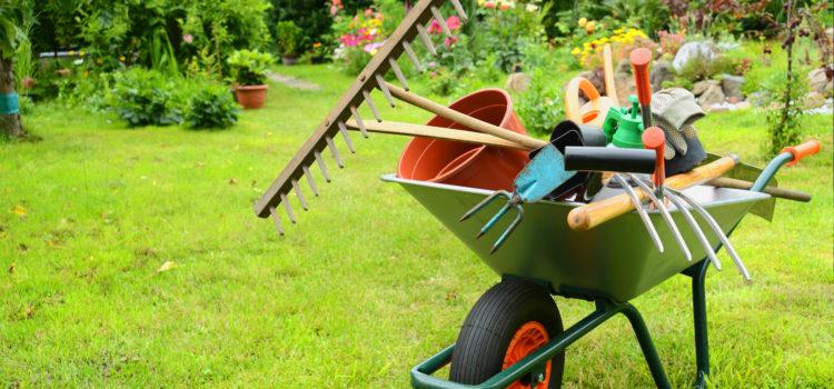 Les astuces pour limiter les opérations d\'entretien du jardin | Tout ...