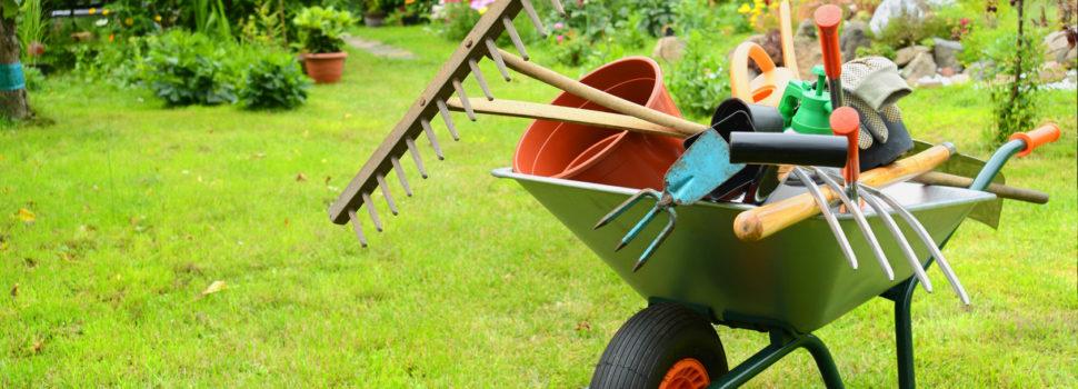 Emejing image d entretien de jardin ideas amazing house for Entretien jardin guidel