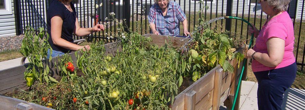 Garden therapy : quand le bien être se trouve dans le jardin