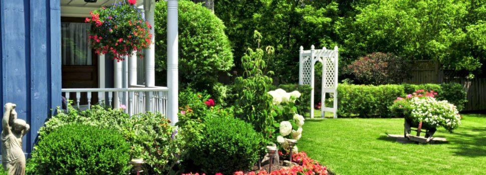 Les bons conseils pour avoir un jardin verdoyant