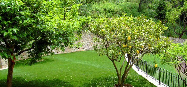 Conseils pour bien entretenir votre pelouse synthétique