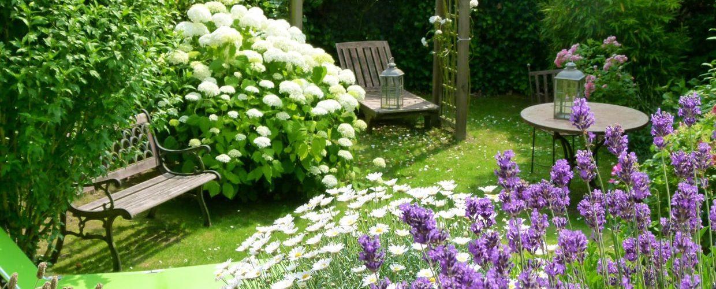 S'offrir un beau jardin : pourquoi et comment ?