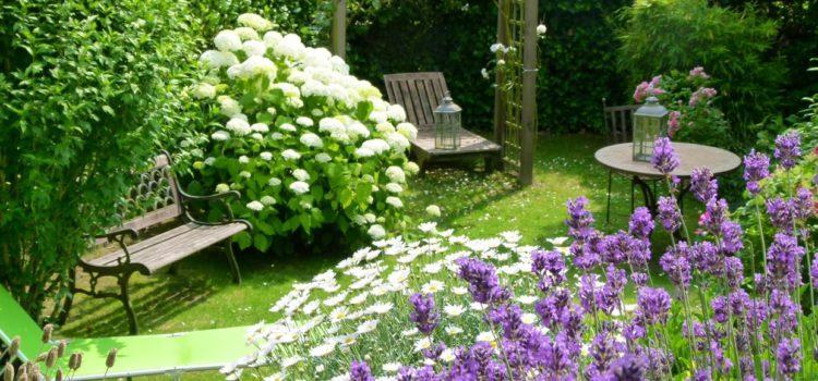S offrir un beau jardin pourquoi et comment tout sur - Comment faire un beau jardin potager ...