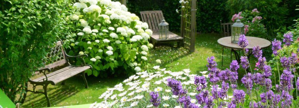 s offrir un beau jardin pourquoi et comment tout sur le jardin et l 39 am nagement ext rieur. Black Bedroom Furniture Sets. Home Design Ideas