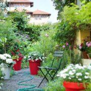 Conseils pratiques pour créer un jardin en hiver